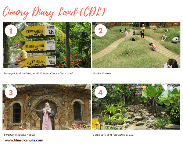 Cimory on The Valley CDL (1)